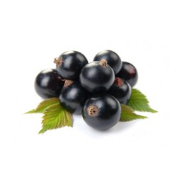 Blackcurrent Delifruit