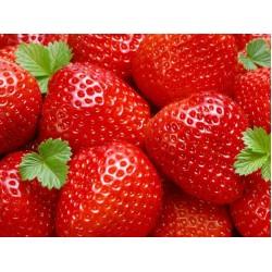 Strawberry fond